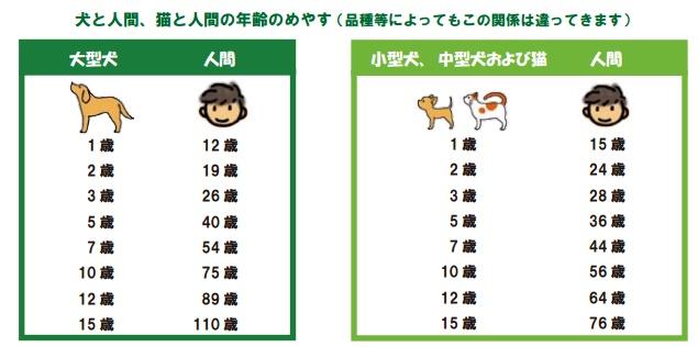 年齢 人間 犬